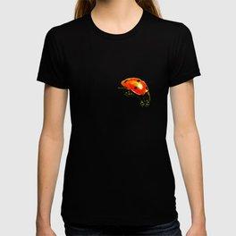 Coccinelle - version light T-shirt