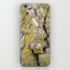 Trippy Bark iPhone & iPod Skin