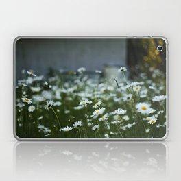 Oregon (wild) II Laptop & iPad Skin
