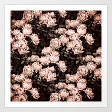 New Old Dreams - Rose Bush Pattern Art Print
