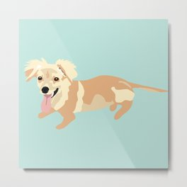 Happy Little Dog Metal Print
