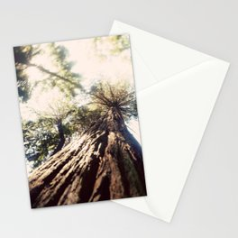 Too Tall Tree Stationery Cards