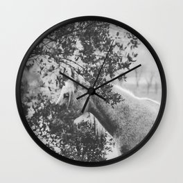 Horse II _ Photography Wall Clock