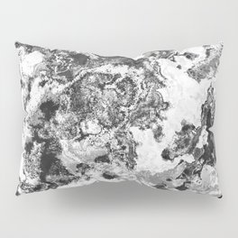 Winter - Study In Black And White Pillow Sham