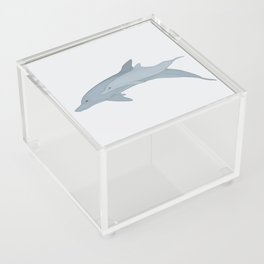 Bottlenose Dolphin Mother and Calf Acrylic Box