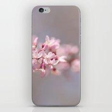 Hanging on a Limb iPhone & iPod Skin