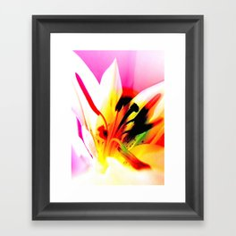 Abstract Of The Lily Framed Art Print