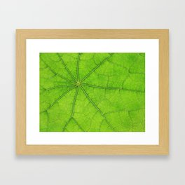 Green Leaf Veins 03 Framed Art Print