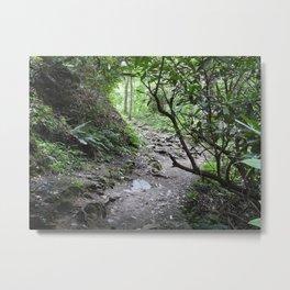 Magical Mountain Path Metal Print