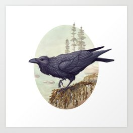 Raven of the North Atlantic Art Print