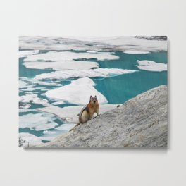 What do YOU want? Metal Print