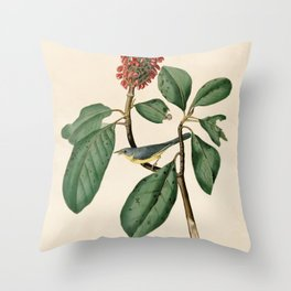 Bonaparte's Flycatcher and Magnolia Audubon Bird Print Throw Pillow