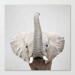 Elephant 2 - Colorful Canvas Print