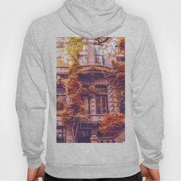 Dressed Up in Autumn - New York City Brownstones Hoody