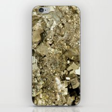 A Golden Fool iPhone & iPod Skin