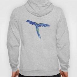 Macaw Hoody