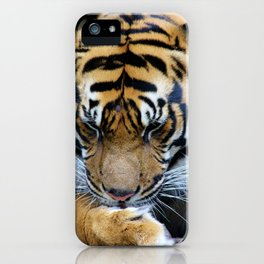 Milk Paws iPhone Case