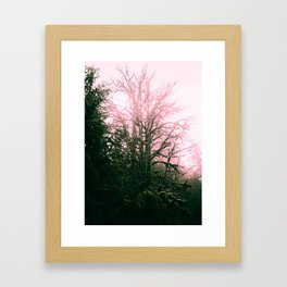 The Tree Spirit #1 Framed Art Print