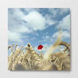Popping up Metal Print