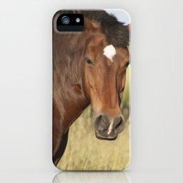 Brown horse portrait iPhone Case