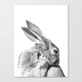 Black and white rabbit Canvas Print
