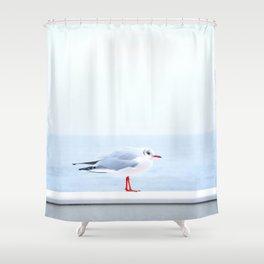 White bird at the beach Shower Curtain