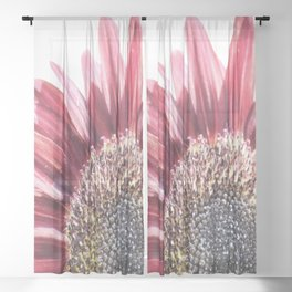 Red Sunflower Sheer Curtain