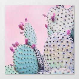 Pink Crush Cactus I Canvas Print
