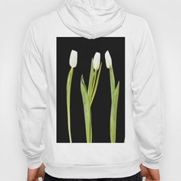 White tulips on a black background Hoody