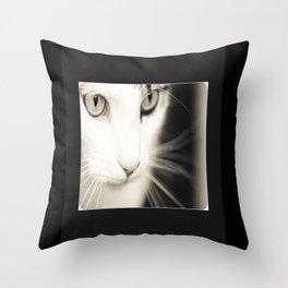 Kisa Throw Pillow