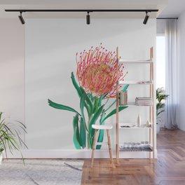 Pincushion protea flower Wall Mural
