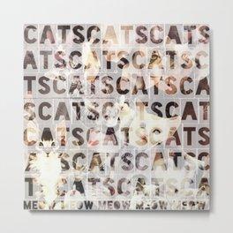 *cats*cats*cats* Metal Print
