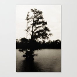 Crypress Tree at Sunrise on the Bayou Canvas Print