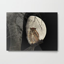 Great Horned Owl A138 Metal Print
