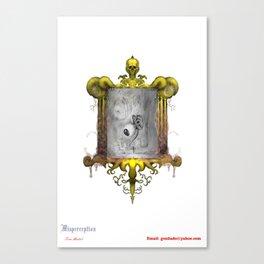 Misperception - no background Canvas Print