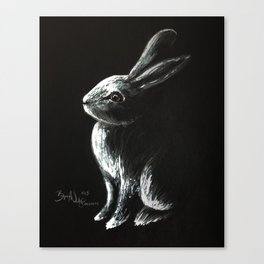 Bunny Painting Canvas Print