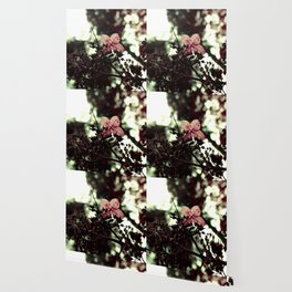 poison berries Wallpaper