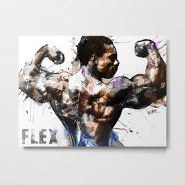 FLEX Metal Print