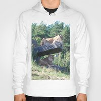 lions Hoodies featuring Lions by Art I Am
