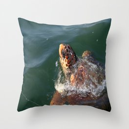 Loggerhead Turtle (Caretta Caretta) Breaking The Sea Surface Throw Pillow