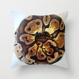 Ball of Python Throw Pillow
