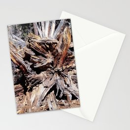 nature views -Tree Stationery Cards