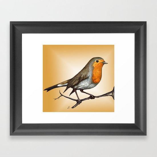 Robin bird Framed Art Print