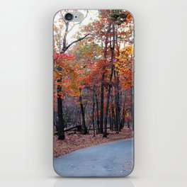 A Journey Through Fall iPhone Skin