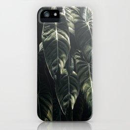 Monstera Leaf, Tropical, Wall Art, Print, Botanical Decor, Modern, Minimal, Plant, Green, iPhone Case
