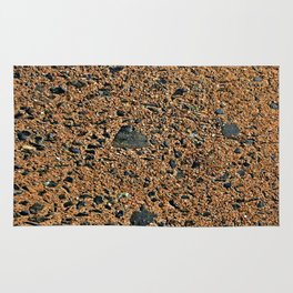 Stone Wall Texture #20a Rug