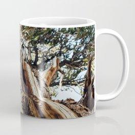 Lines of the Living Coffee Mug