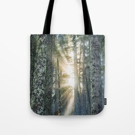 Filtered Light Tote Bag