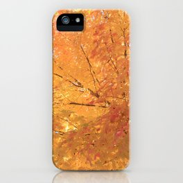 Autumn Explosion iPhone Case