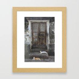 Cats at the Door Framed Art Print